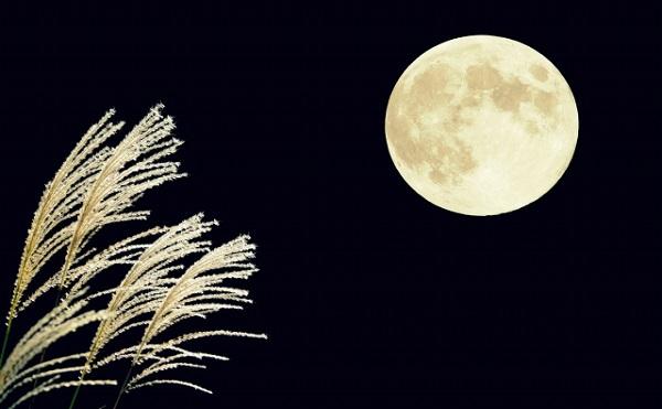 中秋の名月とは旧暦八月十五夜の月!仲秋の名月はいつの月?